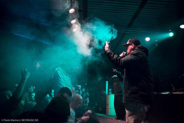 Poze concert Delinquent Habits la Colectiv