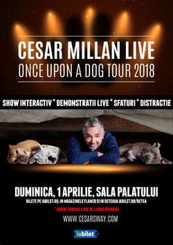 Cesar Millan Live! The Dog Whisperer revine la Bucuresti!