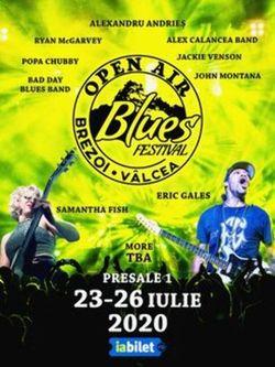 Open Air Blues Festival Brezoi - Valcea
