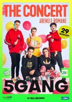 5GANG - Showul Anului 2020 / The Concert / 29 august - Bilet de o zi