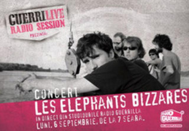 Concert Les Elephants Bizzares, in direct, din Studiourile Radio Guerrilla