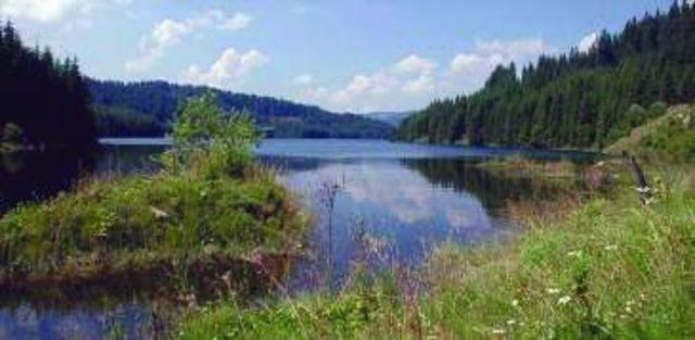 Directia 5 si Compact canta la Ziua Lacului Vidra