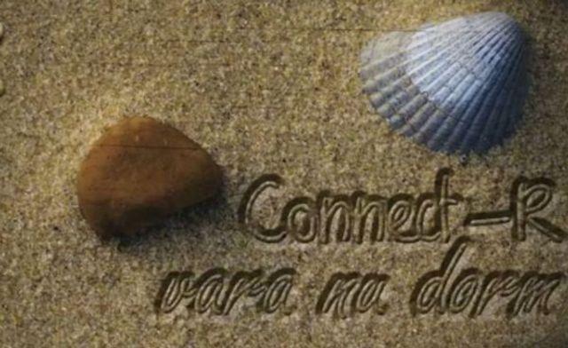 Cititorii Bestmusic.ro au decis: Connect-R - Vara nu dorm este hitul verii 2012!