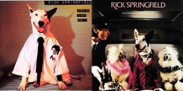 Albume muzicale de succes care au pe coperta animale de companie (Lista)